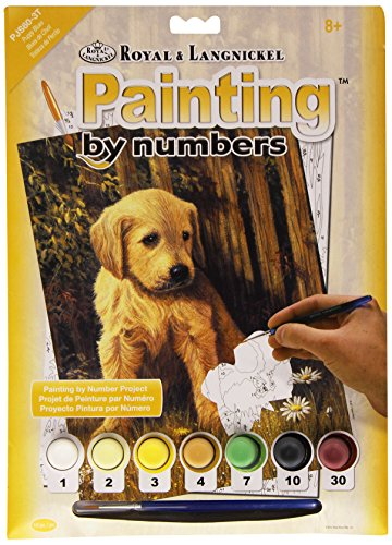 Royal & Langnickel PJS60 Peinture au numéro 11\