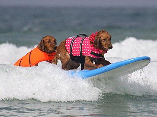 HAOCOO Dog Life Jacket Vest Saver Safety Swimsuit Preserver with Reflective Stripes/Adjustable Belt Dogs?Orange,S