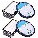 Sayiant Juego de 2 filtros para Rowenta, filtro HEPA para aspiradora Rowenta Power Cyclonic/Moulinex/Tefal