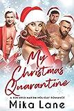 My Christmas Quarantine: A Steamy Holiday Romance