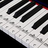 Pegatinas de piano para 88/61/54/49 Etiquetas de los teclados de teclas Conjunto completo para apren...