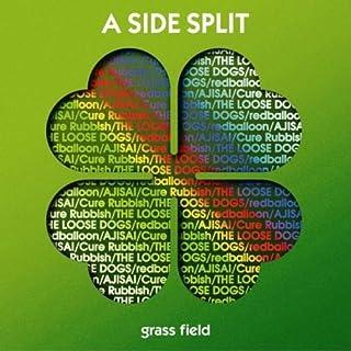 A SIDE SPLIT Vol.1~grass field~