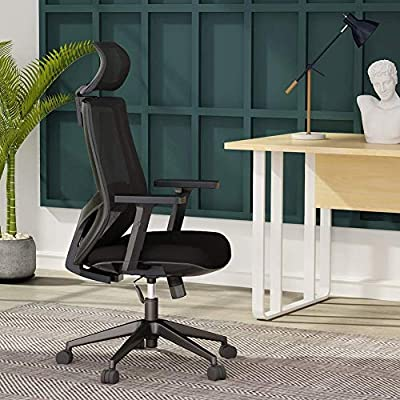 Ergonomic Office Desk Chair Mesh Chair with Lumbar Support Tribesigns High Back Computer Chair with Breathable Mesh, Thick Seat Cushion, Adjustable Armrest and Backrest,
