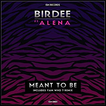 Meant to Be (feat. Alena)