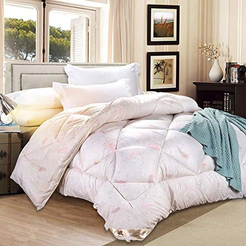 Long gong shop Couette épaisse Chaude Textile à la Maison Respirant Confortable Automne et Hiver Couette Plume Velours Simple Noyau Doux Automne et Hiver 150 * 200 (Couleur : 1)