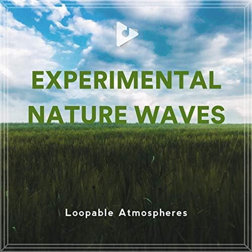 Loopable Atmospheres & Binaural Institute