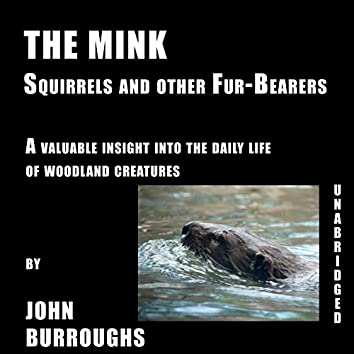 The Mink (Unabridged), a valuable insight into the daily life of woodland creatures, by John Burroughs