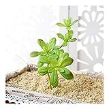 WANGYIYI Plantas Falsas Simulación Creativa Flor Planta suculenta Artificial para Interior y Exterior Jardinera Colgante Decoración del jardín del hogar (Color : Green)