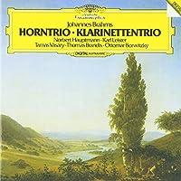 ブラームス:ピアノ三重奏曲第1-3番、ホルン三重奏曲、クラリネット三重奏曲