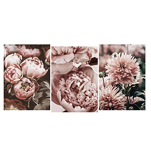Imprimir Wall Art Peony Flower Canvas Painting Poster Decoration Picture for Living Room 40x60cm Con marco Rosa