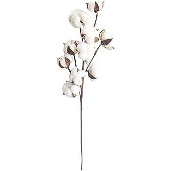 Flor de simulación 10 Ramas de algodón Natural Fabricantes Decoración del hogar Ramos de Novia Planta Flor Pared Flores Falsas (ToGames): Amazon.es: Hogar