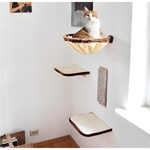 Photo de mur-descalade-pour-chat