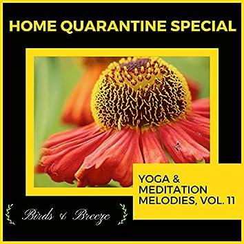 Home Quarantine Special - Yoga & Meditation Melodies, Vol. 11