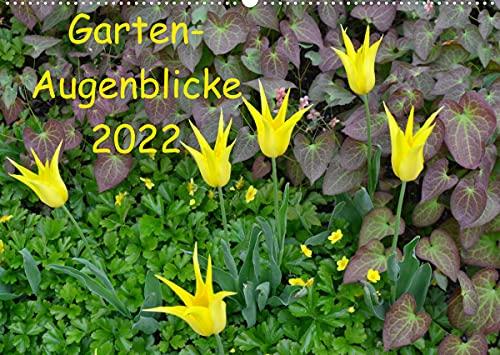 Garten-Augenblicke (Wandkalender 2022 DIN A2 quer)
