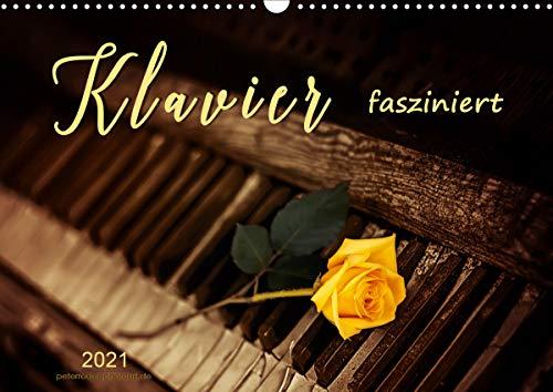 Klavier fasziniert (Wandkalender 2021 DIN A3 quer)