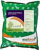 CULTIVERS Tierra de Diatomeas 5 kg Molienda. 100% Natural y...