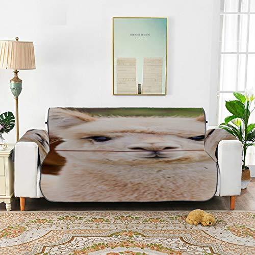 WYYWCY EIN süßer Smart Pretty Alpaca Schonbezug für Ohrensessel T-Cushion Sofabezüge T-Cushion Sofabezüge 66