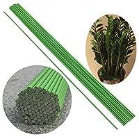 20ピース植物サポートステークスガーデンプラスチックガーデン植物ケージスティックは鉢植えの植物のクライミングクライミングをサポートしますキュウリ(60cm long(4mm))