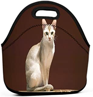 Lunch Bag Insulated Lunch Tote Bag Perfect for Work Picnic singapura breed cat declared singapore government to be living national monument