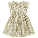 Niyage Toddler Girls Elegant Lace Pom Pom Flutter Sleeve Party Princess Dress Beige 100