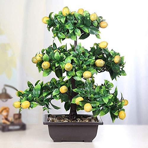 Wghz Árbol Grande de los bonsáis de la Planta Artificial, emula la simulación del bonsái del árbol frutal Decorativo, Creativo del árbol de la Fruta Verde Pl