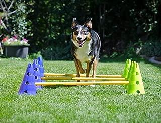 Ball Dynamics FitPAWS CanineGym Agility Kit