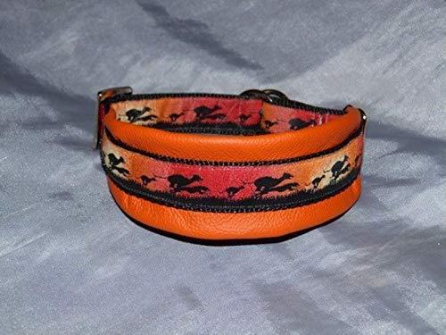 Hunde Halsband Windhund