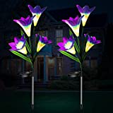 Solarlampen für Außen Garten, 2 Stück Lila Solarleuchten für Außen Solarleuchten Garten Dekoration mit Farbwechsel LED Lampen Weihnachtsdeko, Frühlingsdeko Solar Gartenleuchte Deko Blumen