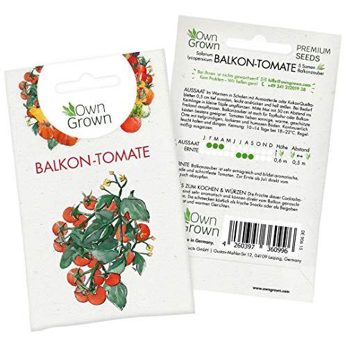 Tomatensamen Cocktailtomate Balkonzauber: Premium Mini Tomaten Samen zum Anbau von Tomatenpflanzen, Topf Tomaten Samen Balkonzauber für Balkon, Kübel und Garten – 5 Gemüse Samen von OwnGrown