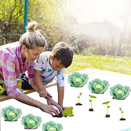 Blssom Garden Weed Barrier Landscape Fabric Robustes Tuch,Anti-Aging- und strapazierfähiges,durchlässiges und Anti-Gras-Tuch für den Garten,einfache Einrichtung und überlegene Unkrautbekämpfung
