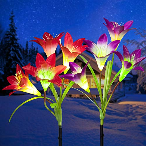 GIGALUMI Solar Lights Outdoor, 2 Pack Solar Flower Lights, 8 Solar Lily Flower, Solar Garden Decorations,Multi-Color Changing LED Solar Landscape Light for Patio, Yard, Garden (Purple & Red)