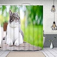 シャワーカーテン屋外で楽しく日光浴をしているかわいい猫 防水 目隠し 速乾 高級 ポリエステル生地 遮像 浴室 バスカーテン お風呂カーテン 間仕切りリング付のシャワーカーテン 150 x 180cm