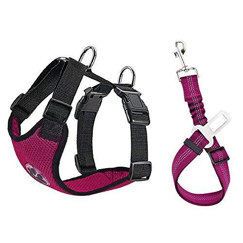 Nasjac Hund Auto Geschirr Sicherheitsgurt-Set, Pet Vest Harness mit Sicherheitsgurt, atmungsaktives Material und Verstellbarer elastischer Gurt für Hunde, die im Freien Laufen (Fushcia Mesh, S)