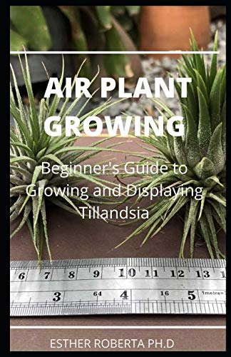 Air Plant Growing: comprehensive guide Everything that you need to know about Air Plants growing and it cares in a single book
