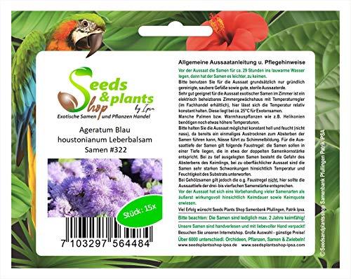 Stk - 15x Ageratum Blau houstonianum Leberbalsam Pflanzen - Samen #322 - Seeds Plants Shop Samenbank Pfullingen Patrik Ipsa