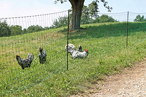 Kerbl 292276 - Rete per pollame, 50 m, 106 cm, a punta, senza corrente, colore: Verde