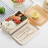 MxZas Box Lunch Goldbaking Box Lunch Cuchara y Tenedor Set Biológica degradable Lunchbox Salud envase de alimento 1000ML Jzx-n