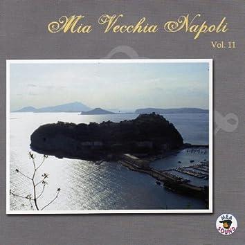Mia Vecchia Napoli, vol. 11