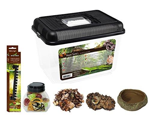 Reptiles Planet Kit met terrarium insect van kunststof voor cétoine 31 x 20 x 21 cm