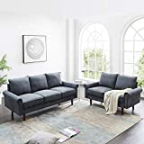 Dolonm 2 Piece Sofa Sets Mid Century Modern Upholstered Sectional Loveseat Couch Set Furniture for Living Room (Light Gray)