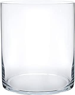 Royal Imports Flower Glass Vase Decorative Centerpiece for Home or Wedding Cylinder Shape, 8