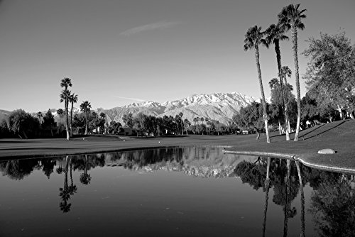 Pond in a golf course Desert Princess Country Club Palm Springs Riverside County California USA Poster Print by Panoramic Images (36 x 24)