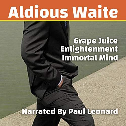 Grape Juice Enlightenment audiobook cover art