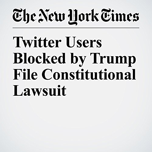 Twitter Users Blocked by Trump File Constitutional Lawsuit copertina