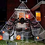 """idenfunny Halloween Spider Decorations 23 X 18 Feet Giant Spider Web with 35"""" Black Halloween Spider for Scary Halloween Decorations Yard Lawn Home Party Haunted House Décor"""