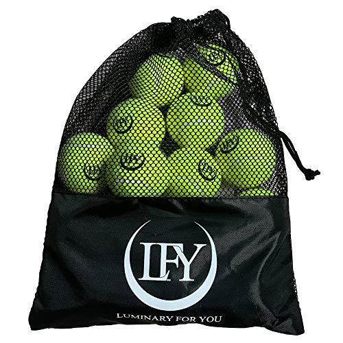 LFY Luminary for you Tennisbälle 15 Stück inklusive Mesh-Tragetasche Tennisbälle perfekt für das Training I Tennis-Unterricht I Freizeitspiele oder als Hundespielzeug