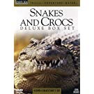 Snakes and Crocs - Deluxe