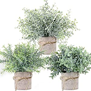 C APPOK Fake Plants Artificial Potted Plants – 3 Pack Eucalyptus Plants – Plastic Green Grass with Pot, Mini Faux Rosemary Plants for Home Decor, Indoor, Table Decoration