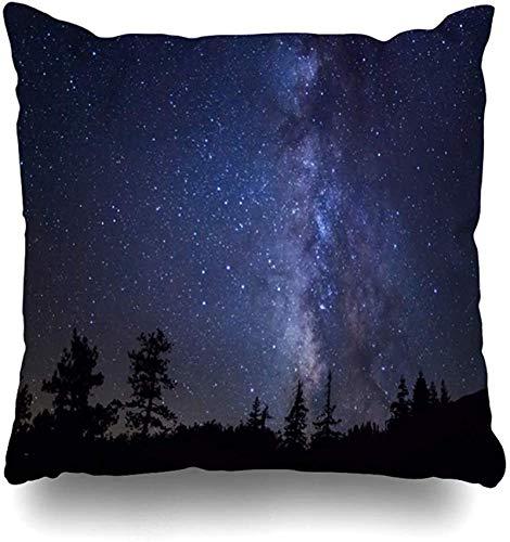 Throw Pillow Cover Painting Sky Row Árboles de hoja perenne frente a la Vía Láctea Universo Naturaleza Estrella Parques Noche Yosemite Medianoche Hogar Funda de almohada Decoración cuad 18×18pulgada