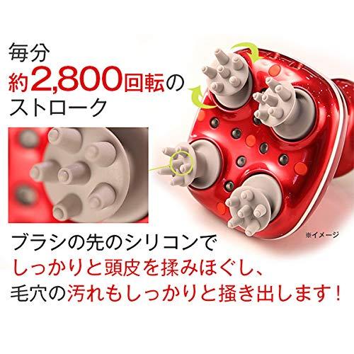 TBS公式/アデランススパニスト&シャンプートリートメントセット防水仕様特別価格ヘッドスパコードレスお顔にも使用可能
